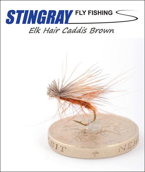 Elk Hair Caddis Brown #12 pintaperho