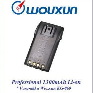 Wouxun Professional 1300mAh Li-on vara-akku