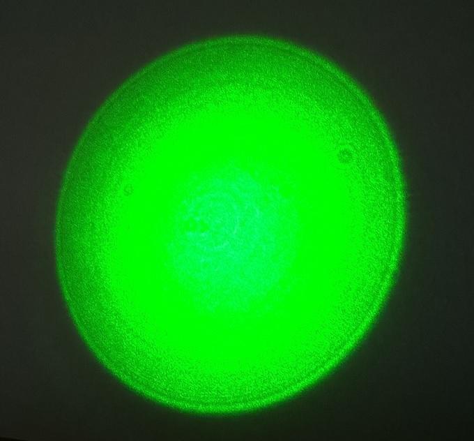 Vihreä häivevalokeila