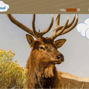 LinckEazi Cloud pilvipalvelu